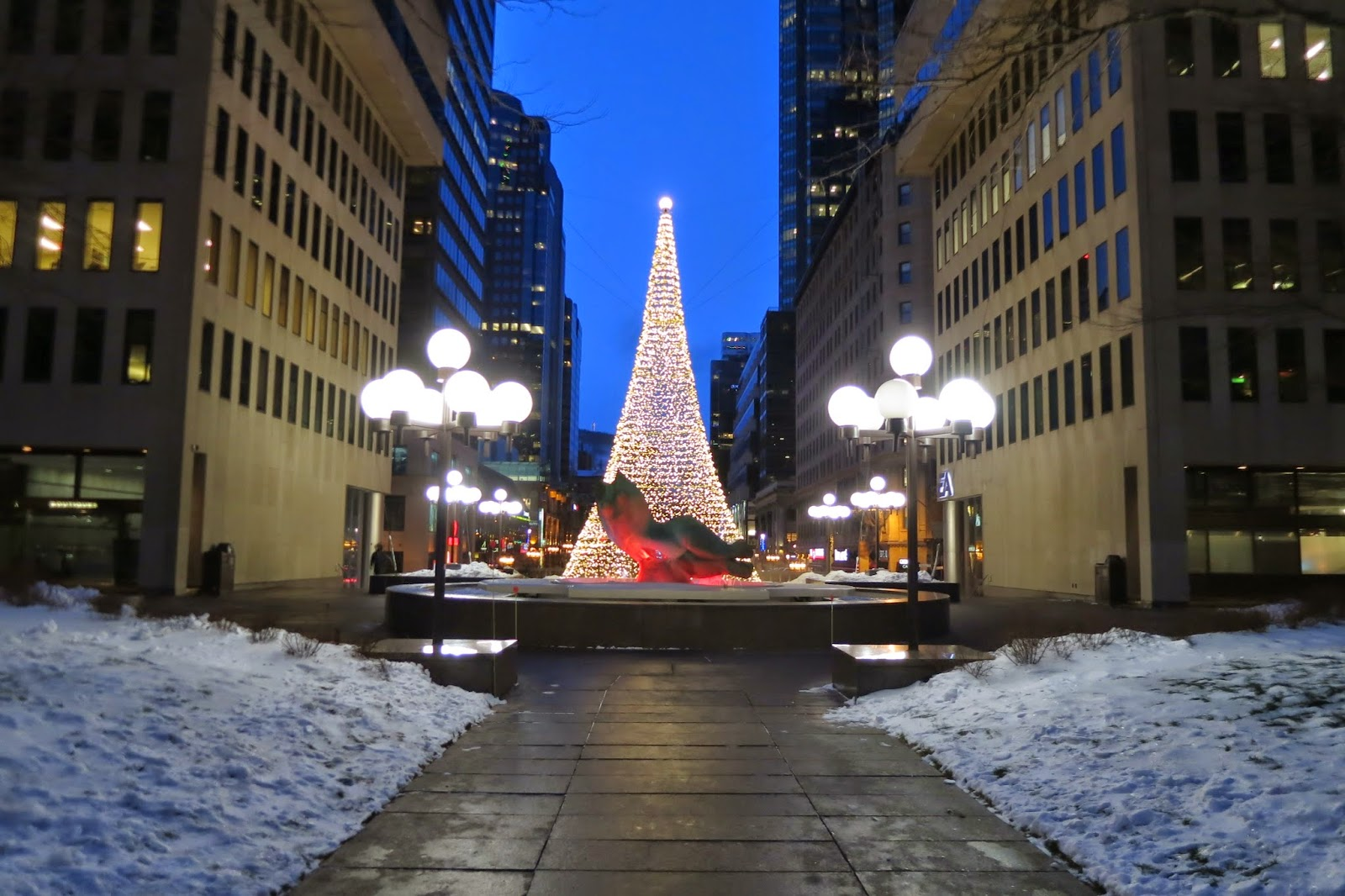 Tree of light between office buildings